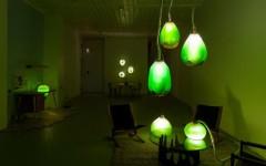 interior design blogs lamps made of algae installation (Copy)