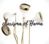 Hanna's Charismatic Mid-century Designs 6 Mid-century Designs Hanna's Charismatic Mid-century Designs Hannas Charismatic Mid century Designs 6 100x90
